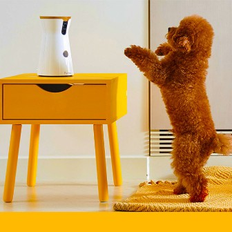 Furbo-Agency-2.0-Crowdfunding-Pet-Cam_dhjjub